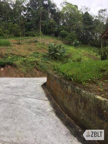 Selecione residencial à venda, rural, benedito novo. - Foto 13