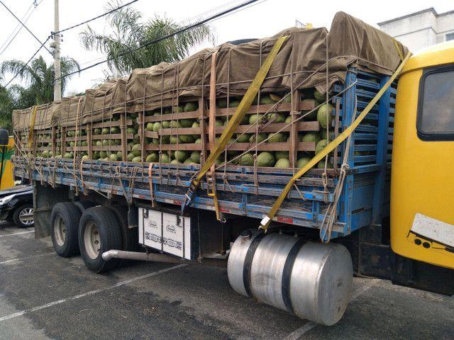 Vendo Carga de Coco Verde fechada ou em Repartições.  - Foto 3