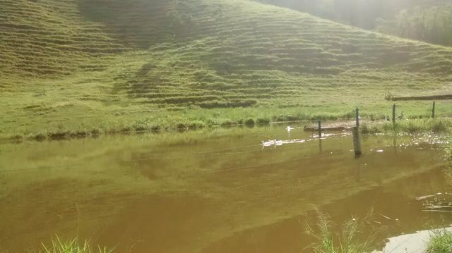 Fazenda 97 alqueires cariacica - Foto 10