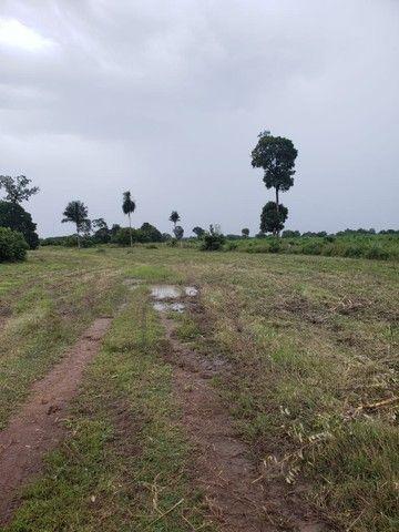VENDA   Fazenda, em ZONA RURAL, Alto Boa Vista