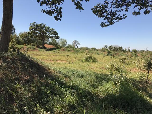 Chácara de 6 hectares - RODOVIA DF 140/135 R$ 380.000,00