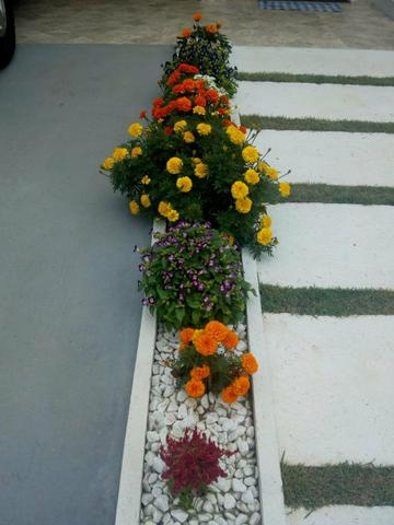 Casa 3 quartos suite no jardim colorado/ Pegamos carro na entrada - Foto 8