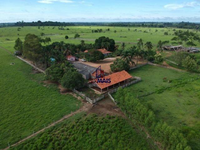 Fazenda à venda, por R$ 4.340.000 - Centro - Seringueiras/RO