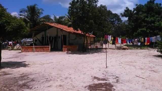 Fazenda em Itarema 386 hectares plantados de cajueiros,lagoa,poço,rio na extrema - Foto 14
