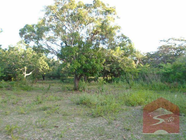 Terreno para venda, próximo à cidade alpha - Foto 7