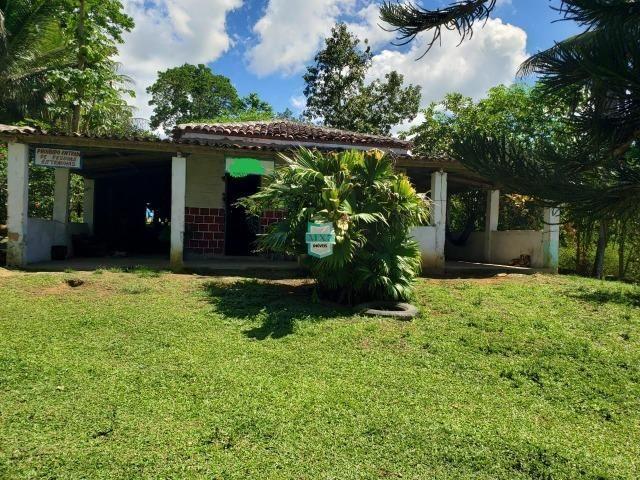 Ibirapitanga. Fazenda pequena com área de 12 ha - Foto 2