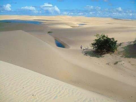 Loteamento fechado na praia do Pontal do Peba! - Foto 9