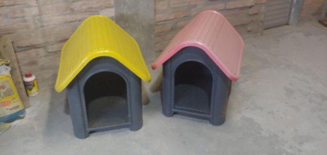 Casinha plástica cachorro