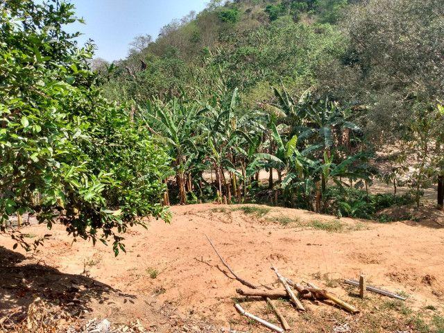 Sítio com 22.000 m2 plantação de banana e outros frutos - Foto 6