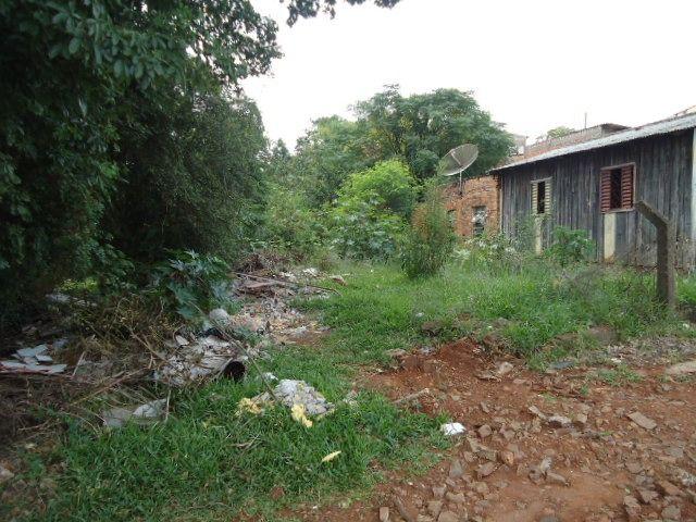 (TE 2450)-Terreno na Avenida Ipiranga, Santo Ângelo - Foto 5