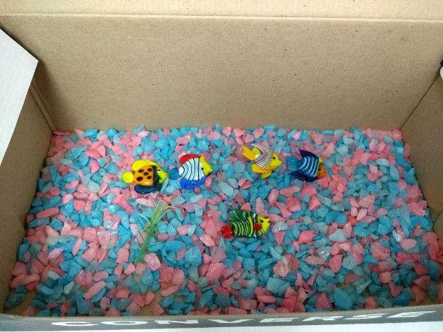 Cascalho pedrinhas para aquário + decoração com 5 peixinhos de vidro - 150g - Foto 4