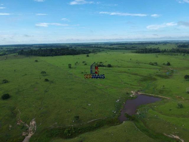 Fazenda à venda, por R$ 4.340.000 - Centro - Seringueiras/RO - Foto 6