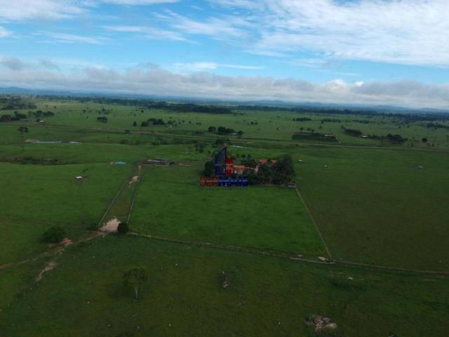 Fazenda à venda, por R$ 4.340.000 - Centro - Seringueiras/RO - Foto 17