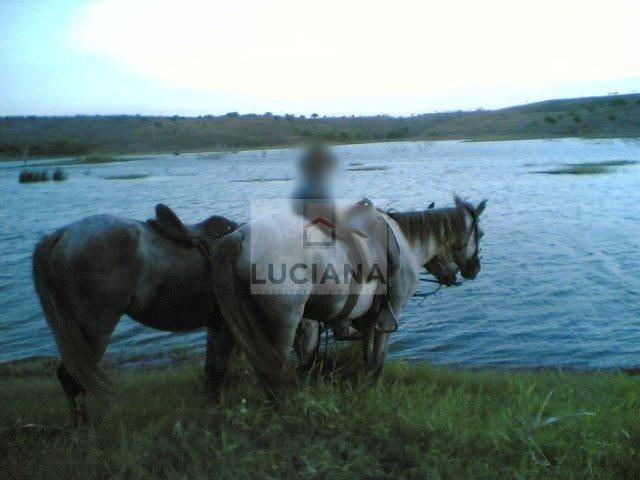 Fazenda com 467 hectares em Limoeiro (Cód.: 103m57) - Foto 14
