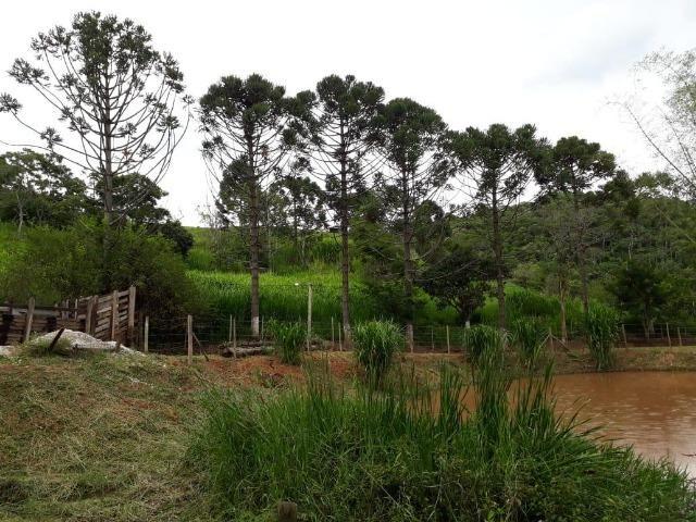 Fazenda em Redenção da serra - Foto 10