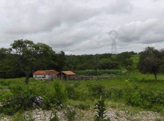 Compra de terra; sítios, chácara e fazenda. - Foto 5