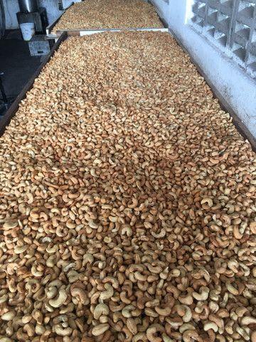 Amêndoas de castanhas de Caju selecionadas