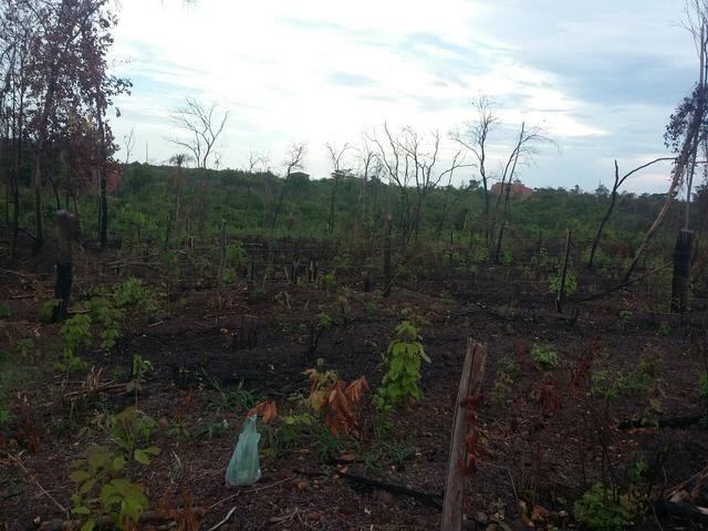 Vendo um terreno em santa teresa