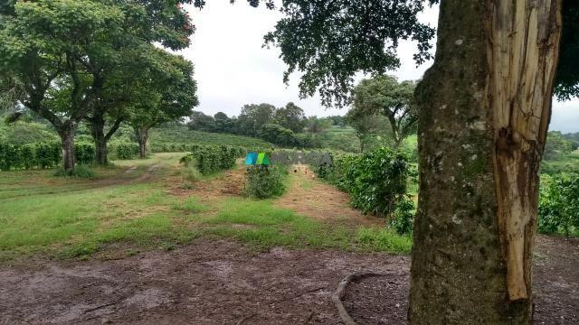 Fazenda à venda - 80 hectares - lavras (mg) - Foto 9