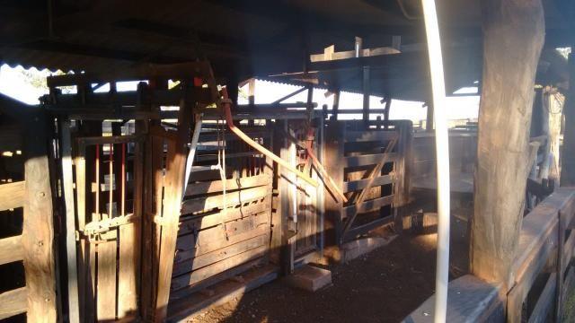 8271   fazenda à venda em pontal do araguaia - Foto 4