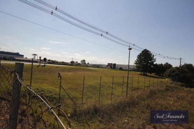 Área para locação, Contorno Leste, São José dos Pinhais. - Foto 10