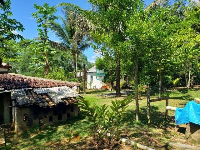 Ibirapitanga. Fazenda pequena com área de 12 ha - Foto 8