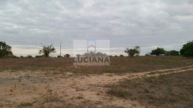 Fazenda com 467 hectares em Limoeiro (Cód.: 103m57) - Foto 3