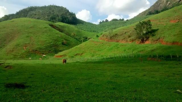 Fazenda 97 alqueires cariacica - Foto 8
