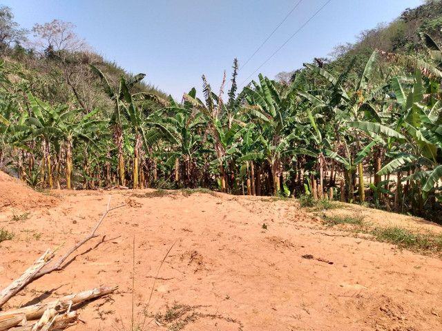 Sítio com 22.000 m2 plantação de banana e outros frutos - Foto 3