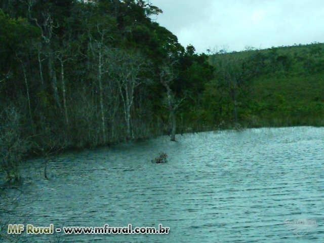 Linda Fazenda em Mato Grosso - em Conquista D´oeste - MT - Foto 4