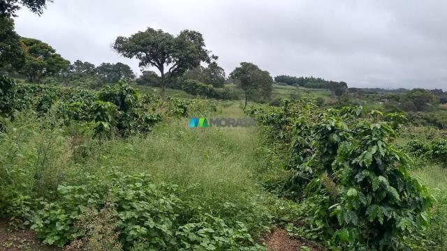 Fazenda à venda - 80 hectares - lavras (mg) - Foto 10