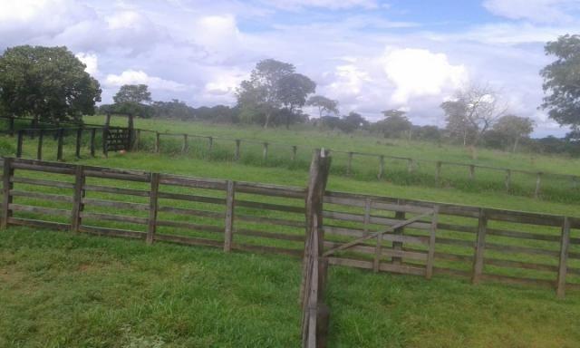 8271   fazenda à venda em pontal do araguaia - Foto 9