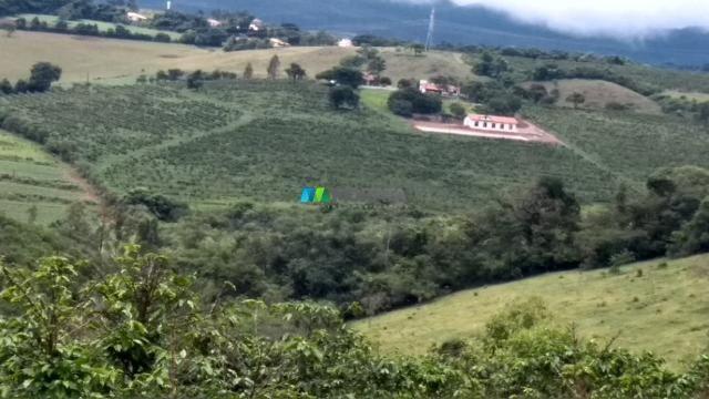 Fazenda à venda - 80 hectares - lavras (mg) - Foto 5