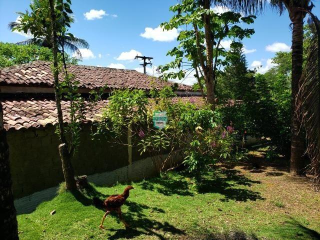 Ibirapitanga. Fazenda pequena com área de 12 ha - Foto 7