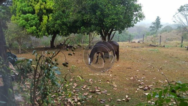 Fazenda com 313 ha região da serra de são vicente - Foto 4