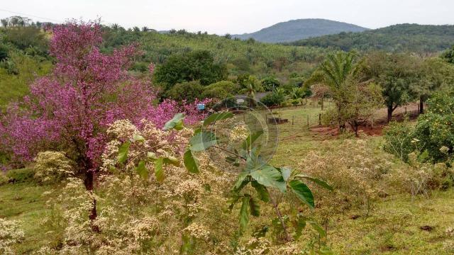 Fazenda com 313 ha região da serra de são vicente - Foto 8