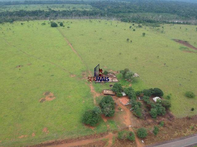 Fazenda à venda, por R$ 7.375.000 - Centro - Costa Marques/RO - Foto 2