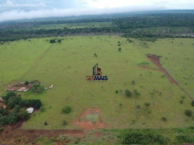 Fazenda à venda, por R$ 7.375.000 - Centro - Costa Marques/RO - Foto 5