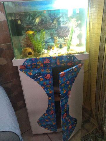 Vendo um lindo aquário completo  - Foto 3
