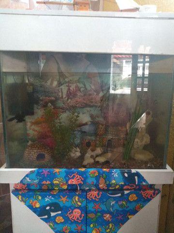 Vendo um lindo aquário completo  - Foto 6