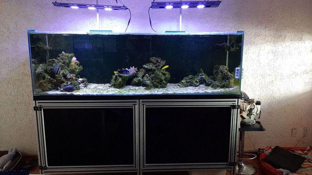 Aquário marinho completo 800litros  - Foto 6