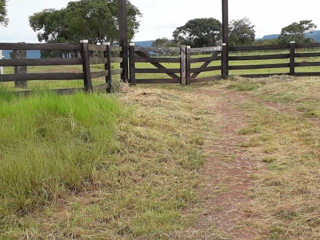 Sitio proximo de cuiabá a 105km, sentido Rondonópolis, Agrovila das palmeiras - Foto 3