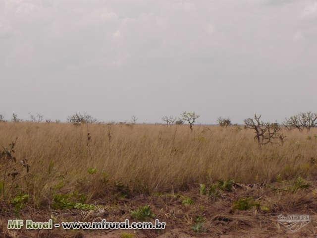 Linda Fazenda em Mato Grosso - em Conquista D´oeste - MT - Foto 10