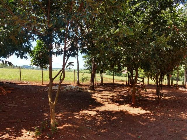Chácara de lazer Carmo do Rio Verde - Foto 6