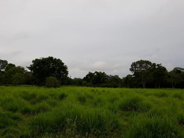 Permuta 100% em imóveis em Goiânia - Foto 2