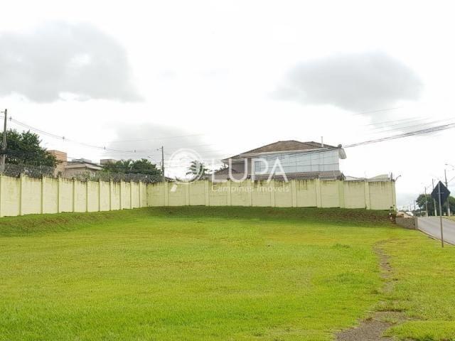 Terreno à venda com 0 dormitórios em Betel, Paulínia cod:TE000372 - Foto 2