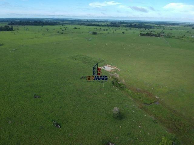 Fazenda à venda, por R$ 4.340.000 - Centro - Seringueiras/RO - Foto 7
