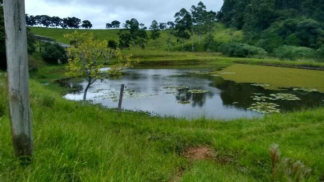 Sitio 20 alqueires com 5 lagos a venda em socorro sp - Foto 13