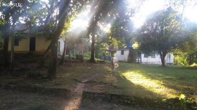 Sítio para venda em cachoeiras de macacu, faraó, 3 dormitórios, 1 banheiro, 10 vagas - Foto 17