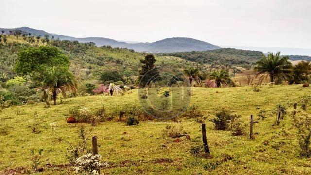 Fazenda com 313 ha região da serra de são vicente - Foto 12